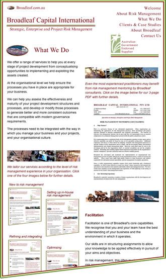 Broadleaf Capital International: Project Risk Management